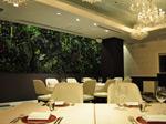 Restaurant MASA UEKI